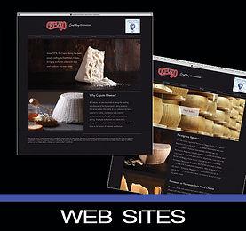 WEB SITES.jpg