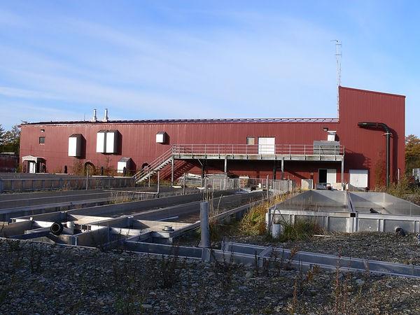 Янский лососёвый рыбоводный завод