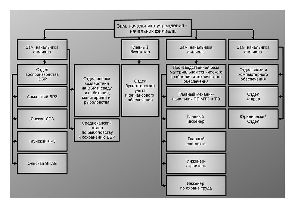 Структура 16.jpg
