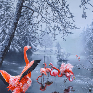 flamingo winter