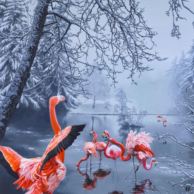 flamingo winter