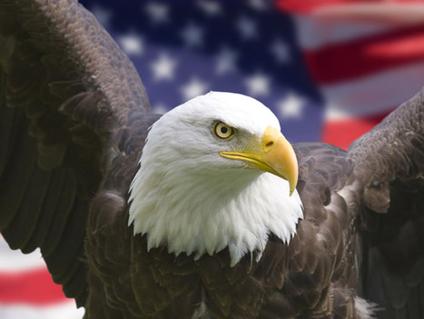 Prayer for the USA: Happy 4th of July!