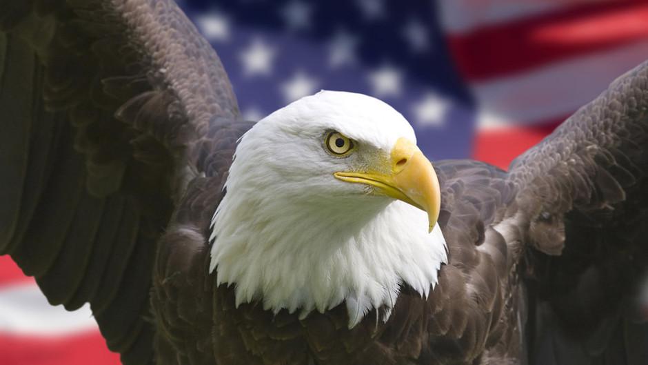 In Defense of American Civilization
