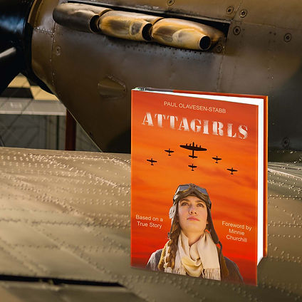 Book on Spitfire Wing.JPG
