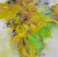 sunflowers 02