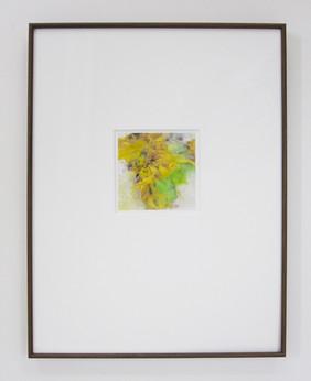 sunflowers drawing 額装