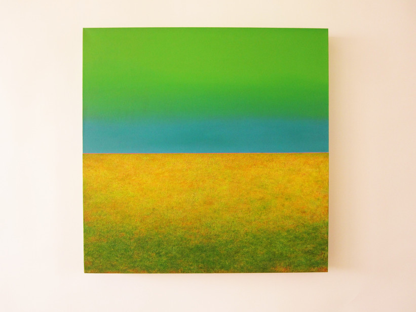 greenland 2009