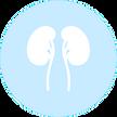 Nephrology-min_edited.png
