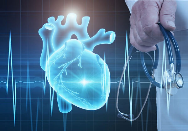 cardiology-1024x717-2.jpeg