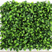 Big Green Leaves Tile (Outdoor).JPG