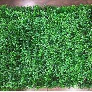 Small Leaves tile (Indoor).JPG