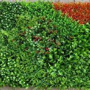 Shrub_Multi_color_Leaves_Tile_–_(Indoor)