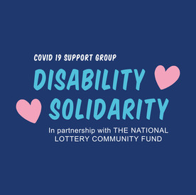 Navy Disability Solidarity Logo