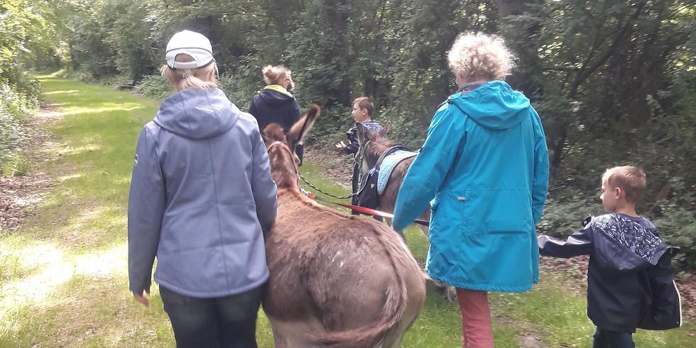Eselwanderung - Tiergestützte Aktivität für Groß und Klein (1)