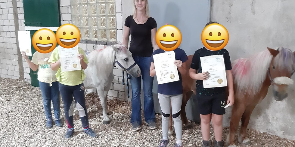 Pony-ABC AUSGEBUCHT! für Kinder von 4-7 Jahre
