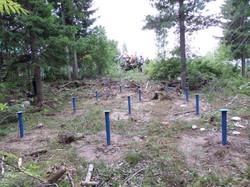 Винтовые сваи в лесу