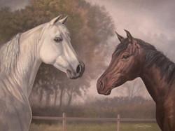 Sass horses