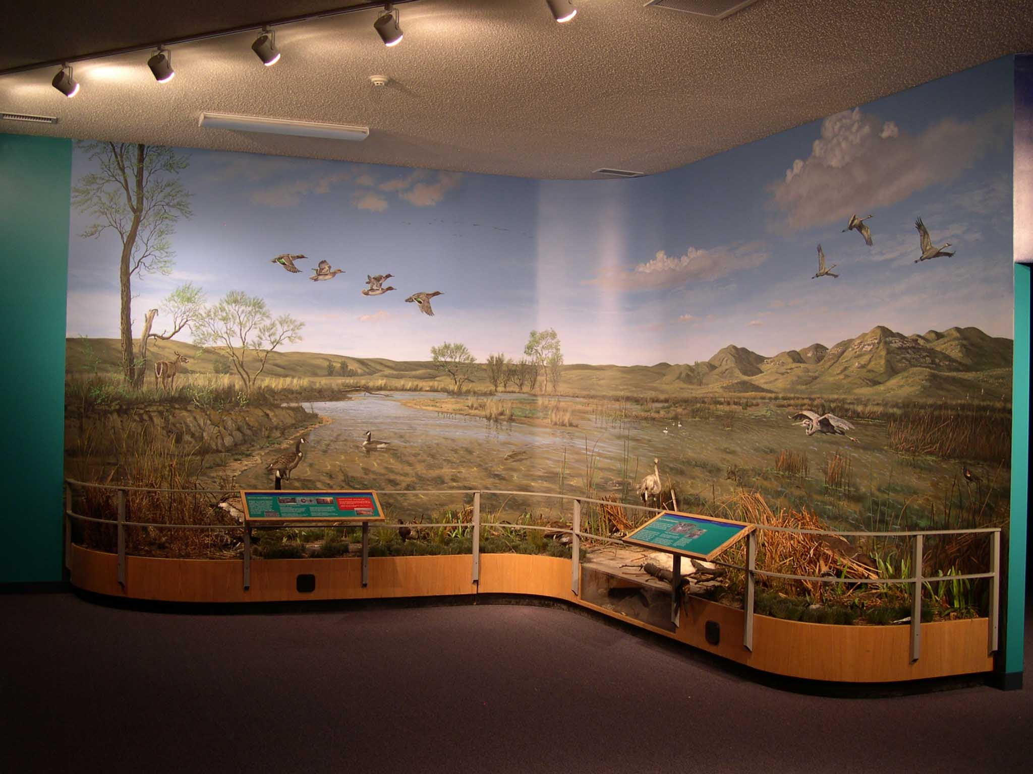Lake McConaughy Wetlands Diorama