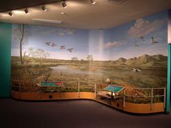 Lake McConaughy Wetlands Diorama