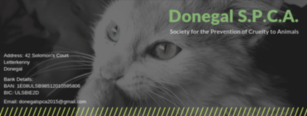Donegal SPCA Header HD