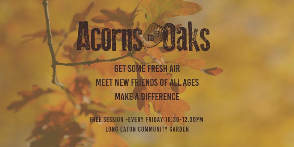 Acorns To Oaks - 11th October 2019