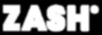 ZASH bike logo