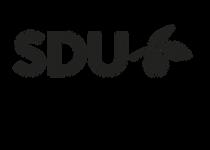 SDU Syddansk Universitet