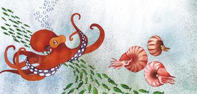 Bog illustrationn