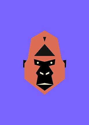 Thea Sonderegger, Gorilla