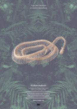 Thea Sonderegger, Plakat Python Skellet