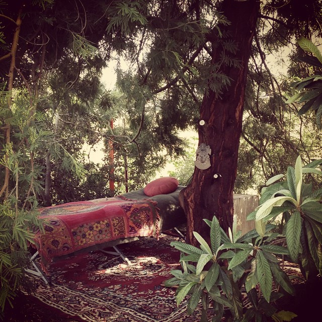 Beneath the Silver Wattle Tree. A quiet