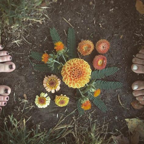 Our 2017 farmer florist apprenticeship a
