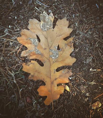 Black Oak Beauty. #wholesome #foodforthe