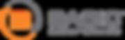 BAS_LogoC+Gray.png