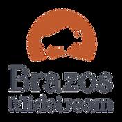 BZM-Logos-PMS-2C (002).png