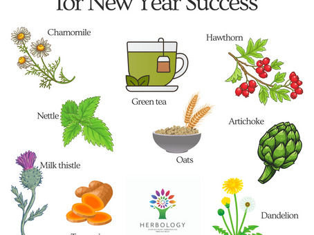 How can herbal medicine help you meet your goals this year?