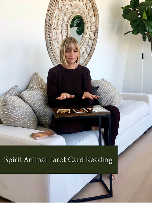 Spirit Animal Tarot Card Reading with Heather Martin