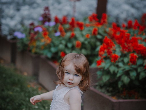 PA Lifestyle Photographer   Nancy 18 months