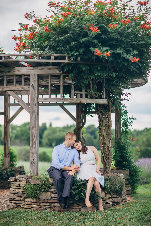 PA Engagement Lavender Farms15