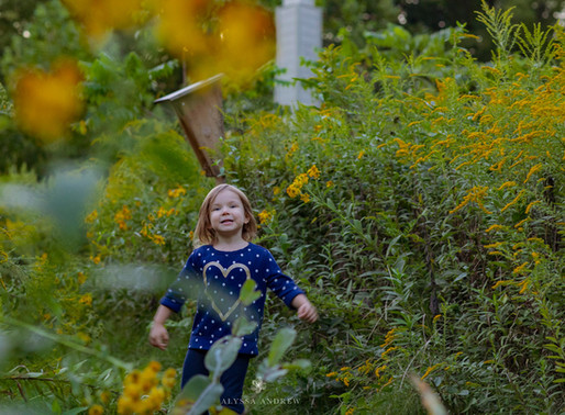 Lehigh Valley Photographer | Fall Mini Sessions Announced!