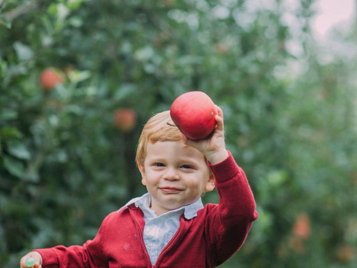 PA Lifestyle Photographer | Grant - IN The Orchard