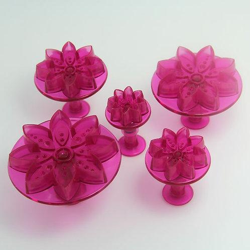 5 découpoirs fleurs