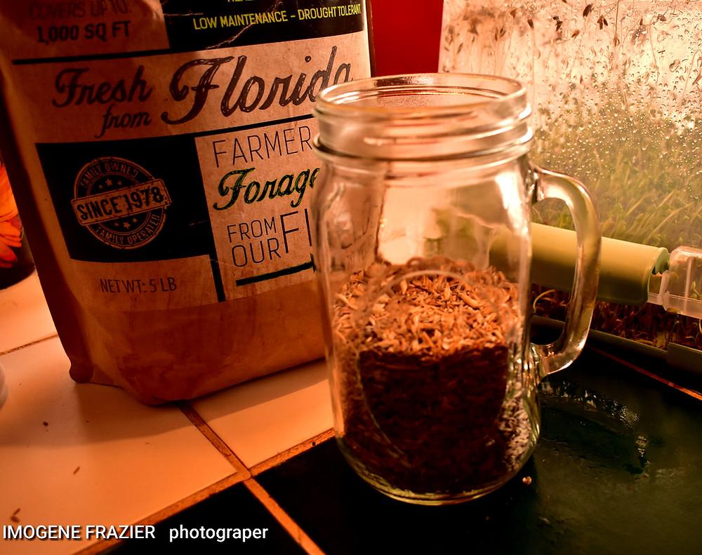 Pour seeds in a quart jar.