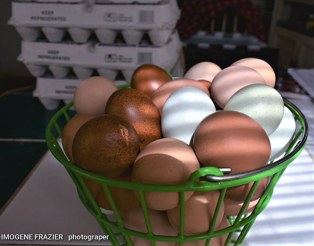 Colorful eggs for the basket