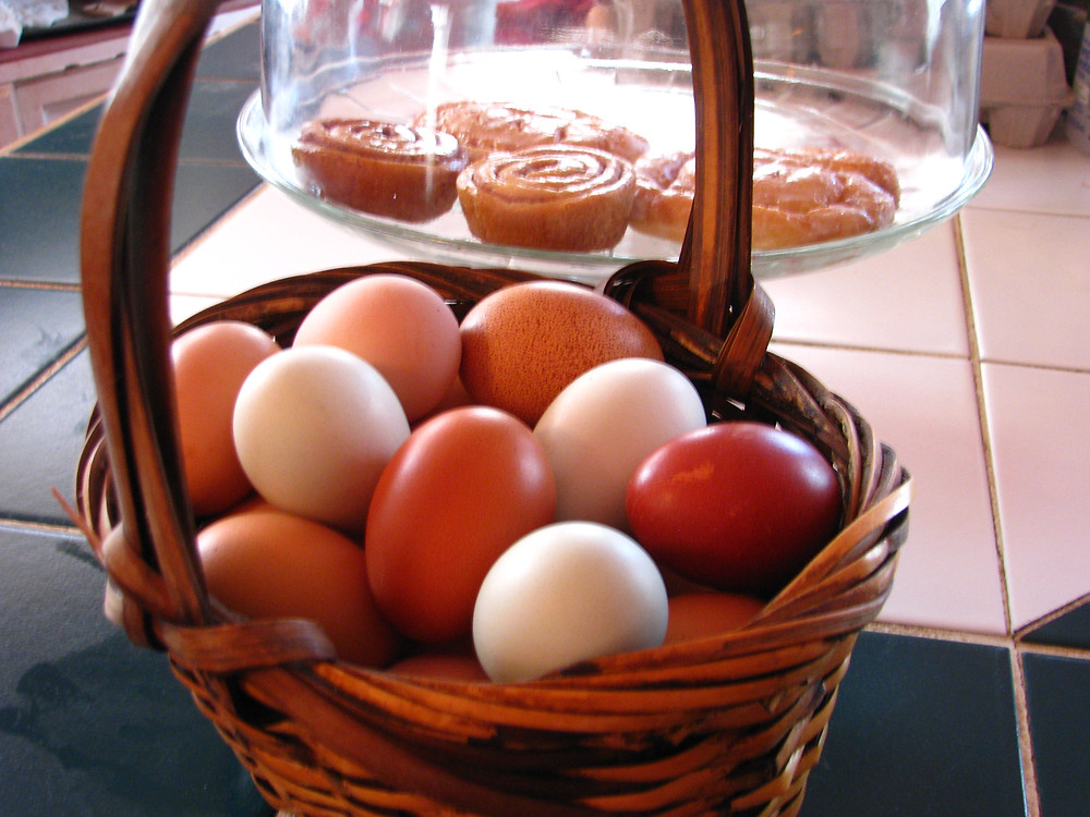 Eggs from French Black Copper Maran, Welsummer, Rhode Island Red, Light Brahma, Ameraucana, and Easter Egger