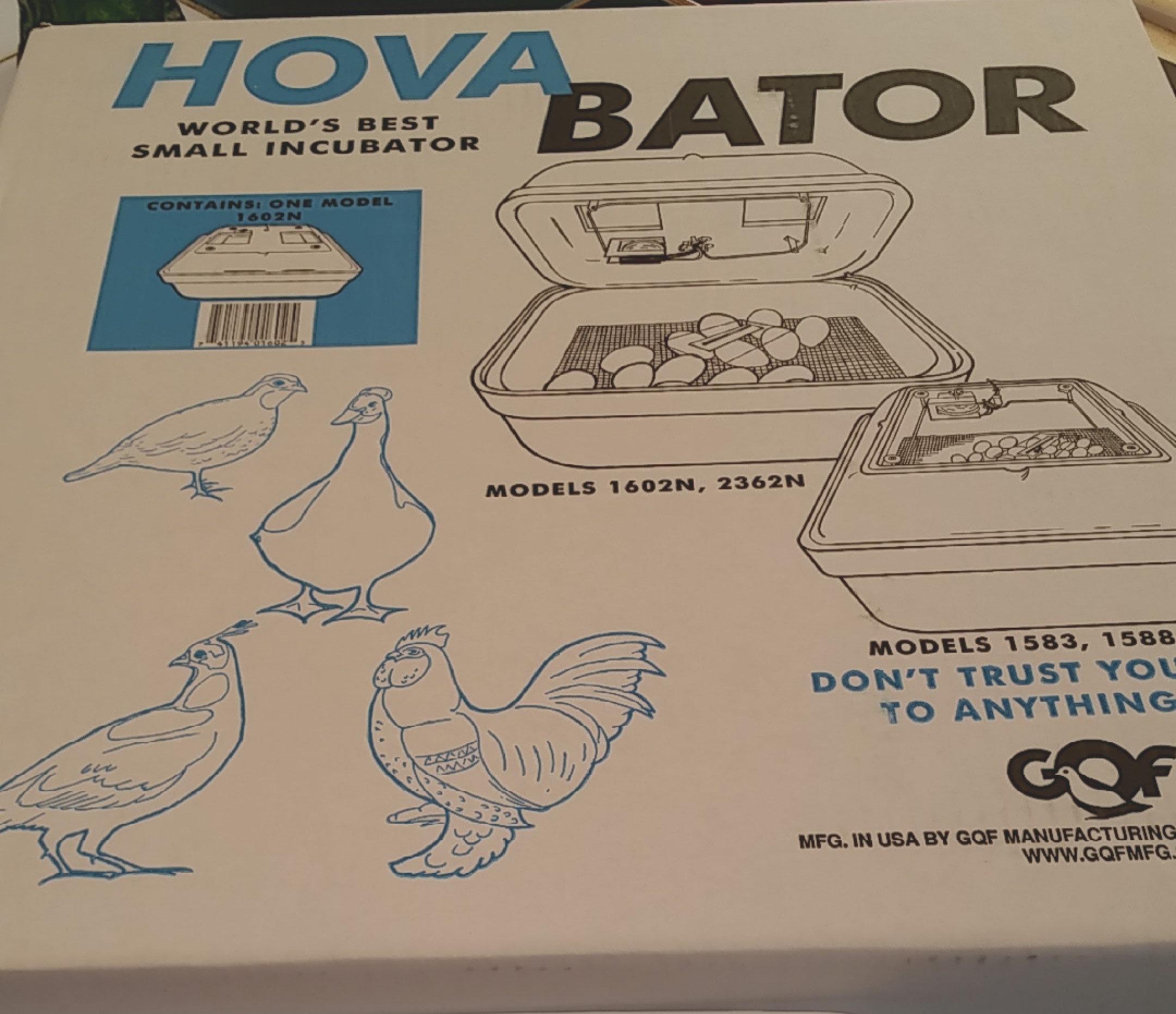 Hatching Eggs Beginners Incubation Kit   eggwell-farm