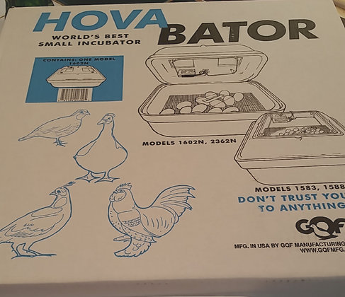 Hatching Eggs Beginners Incubation Kit