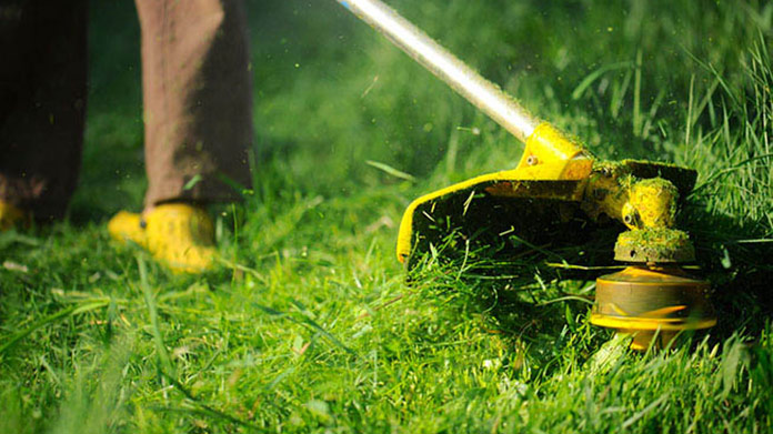 Lawn-Care-Business