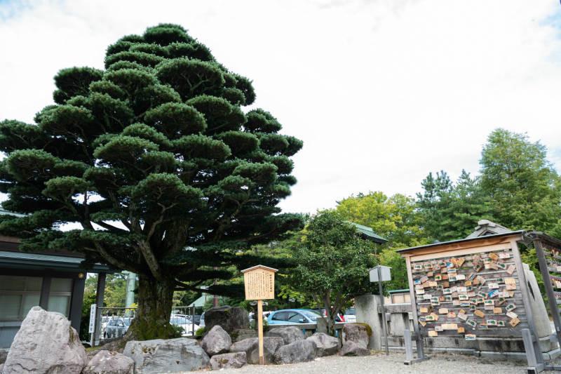 石川護国神社_D5J1442-800p.jpg