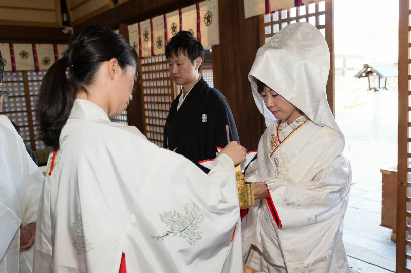 石川護国神社a-186-800p.jpg